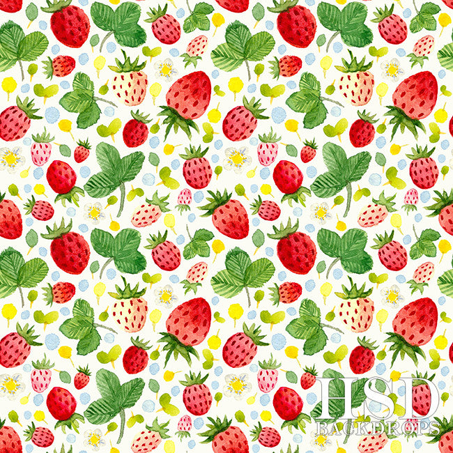 Photography Backdrop Background | Strawberry Shortcake