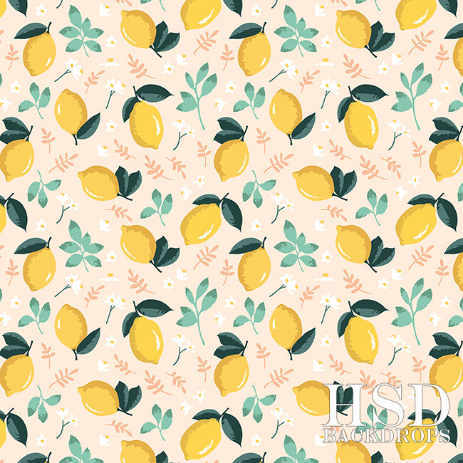 Citrus & Mint - HSD Photography Backdrops