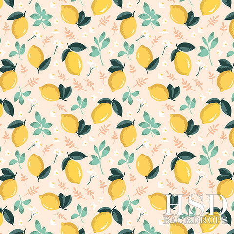 Photography Backdrop Background | Citrus & Mint