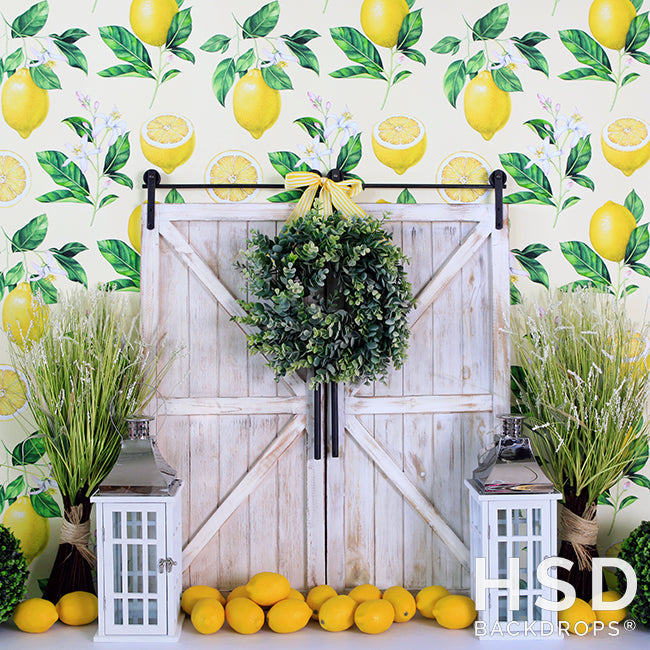 Lemon Drop photography backdrop & background