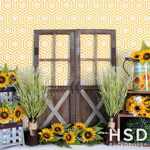 Photography Backdrop Background | Sunflower Set Up