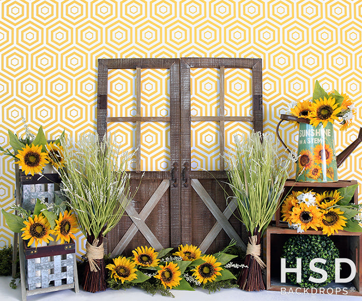 Sunflower Set Up photography backdrop & background