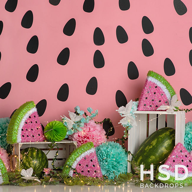 Watermelon Party - HSD Photography Backdrops