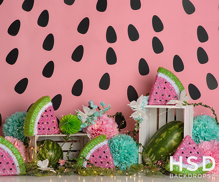 Watermelon Party photography backdrop & background
