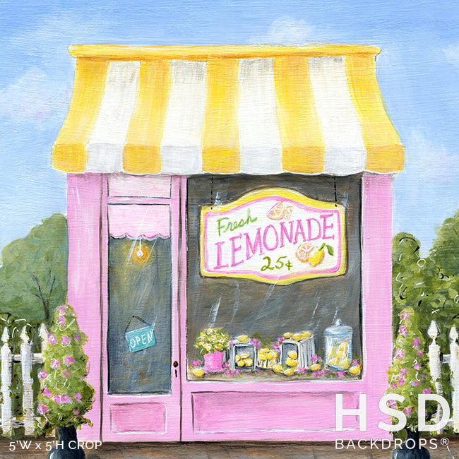 Lemonade Shop photography backdrop & background