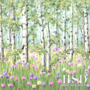 Spring Birch Trees - HSD Photography Backdrops