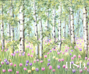 Spring Birch Trees photography backdrop & background