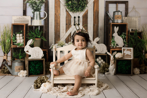 Bunny Scene photography backdrop & background
