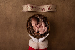 Digital Backdrop | Winter Woodland Coll. | Santa Baby