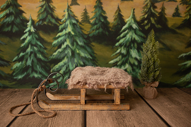 Sleigh Ride | Lumberjack Coll. | Digital - HSD Photography Backdrops