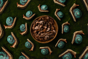 Snail Garden - HSD Photography Backdrops