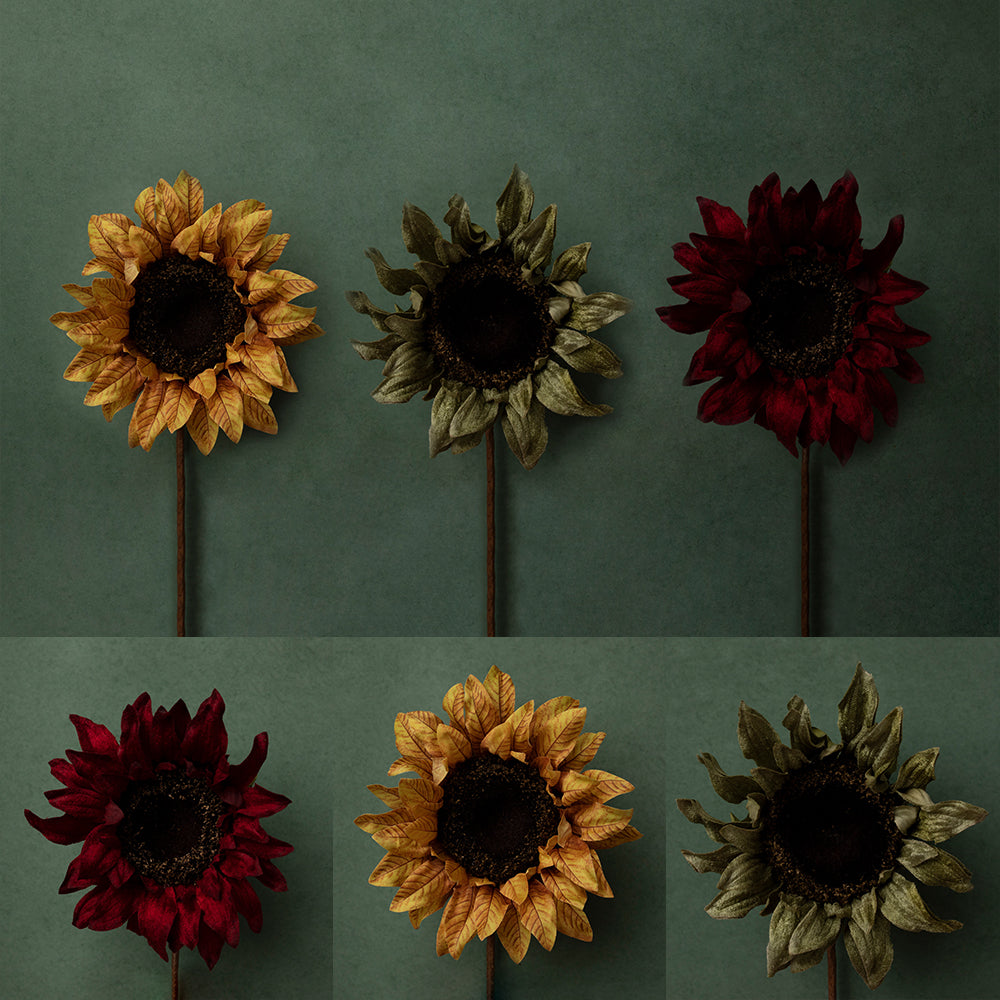 Digital Backdrop | Sunflower Delight Collection