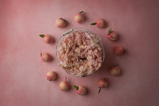 Sweet Peach Collection | Digital - HSD Photography Backdrops