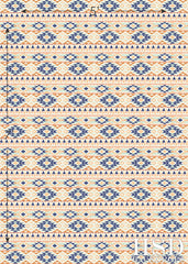 Photography Backdrop | Aztec Pattern