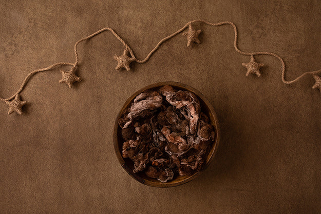 Twine Stars I | Winter Woodland Coll. | Digital - HSD Photography Backdrops