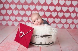 I Heart You photography backdrop & background