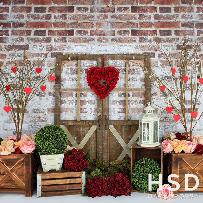 Queen of Hearts photography backdrop & background
