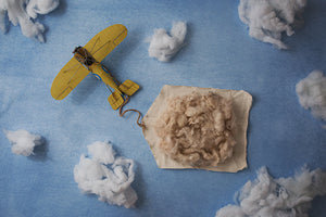 Special Delivery II | Vintage Airplanes Coll. | Digital photography backdrop & background