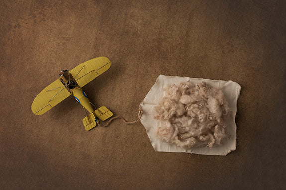 Special Delivery I | Vintage Airplanes Coll. | Digital photography backdrop & background