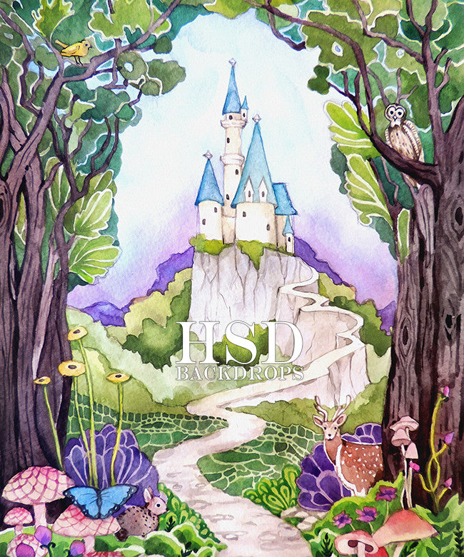 Enchanted Castle photography backdrop & background