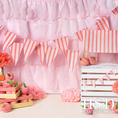 Photography Backdrop Background | Peachy Keen Set Up