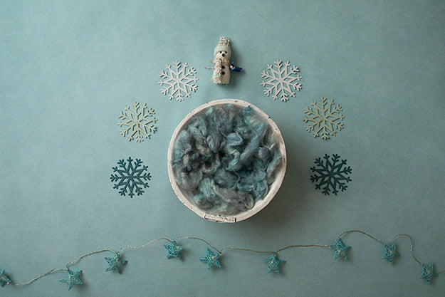 Digital Backdrop | Winter Wonderland Coll. | Winter Frost