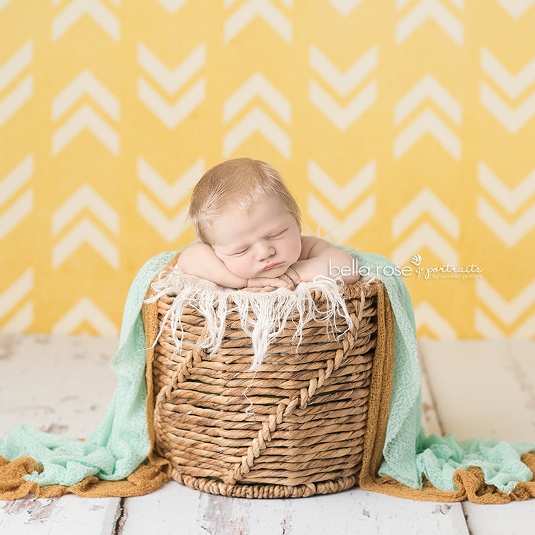 Photography Backdrop Background  | Owen
