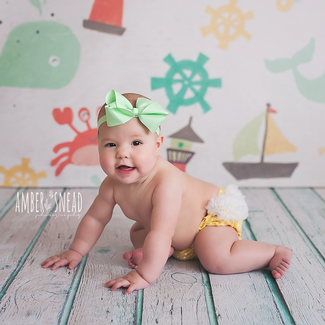Photography Backdrop Background | At the Beach