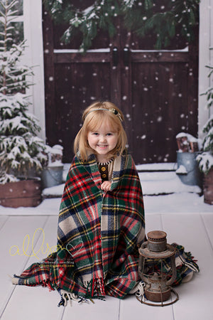 Christmas Barn Doors - HSD Photography Backdrops