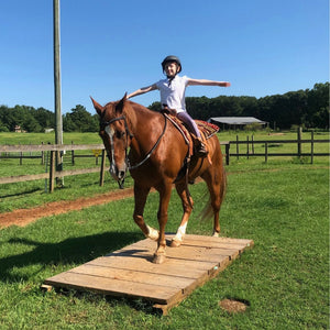 Private Riding Lessons - 1 Hour