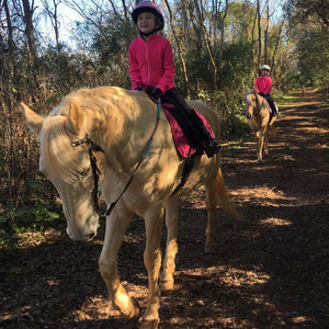 2 Person Riding Lessons - 1 Hour