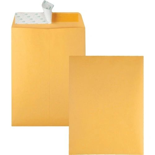 Brown Catalog Envelopes, Redi-Strip Peel, 100/BX
