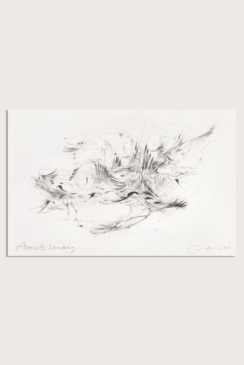 A drawing by contemporary, woman artist Frances Gynn