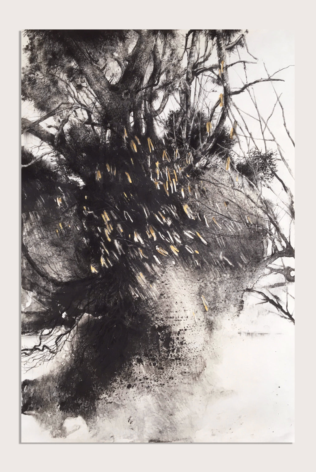 A representational drawing by contemporary, woman artist Frances Gynn