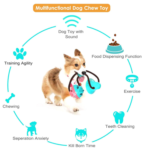 Multifunction Pet Interactive Toy