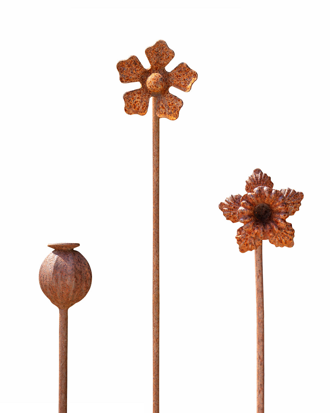 Set of iron flowers