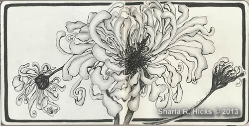 Chrysanthemums by Sharla R. Hicks, artist, CZT, author