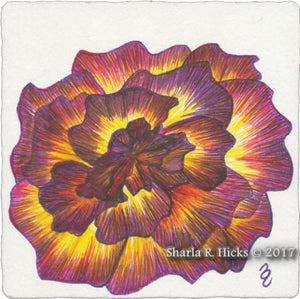 The Rose , example from Tangle-Inspired Botanical Retreat by Sharla R. Hicks, CZT, author