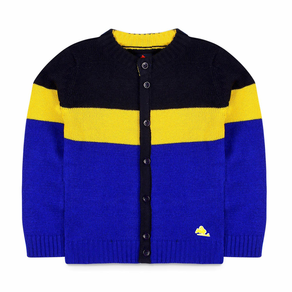Button Front Colorblock Sweater  for Boys