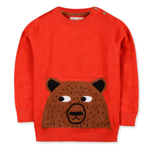 Colourful Intarsia Sweater for kids