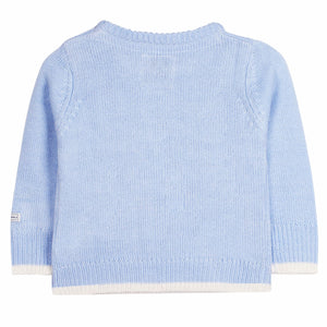 Animal Pet Knitted Sweater for Boys