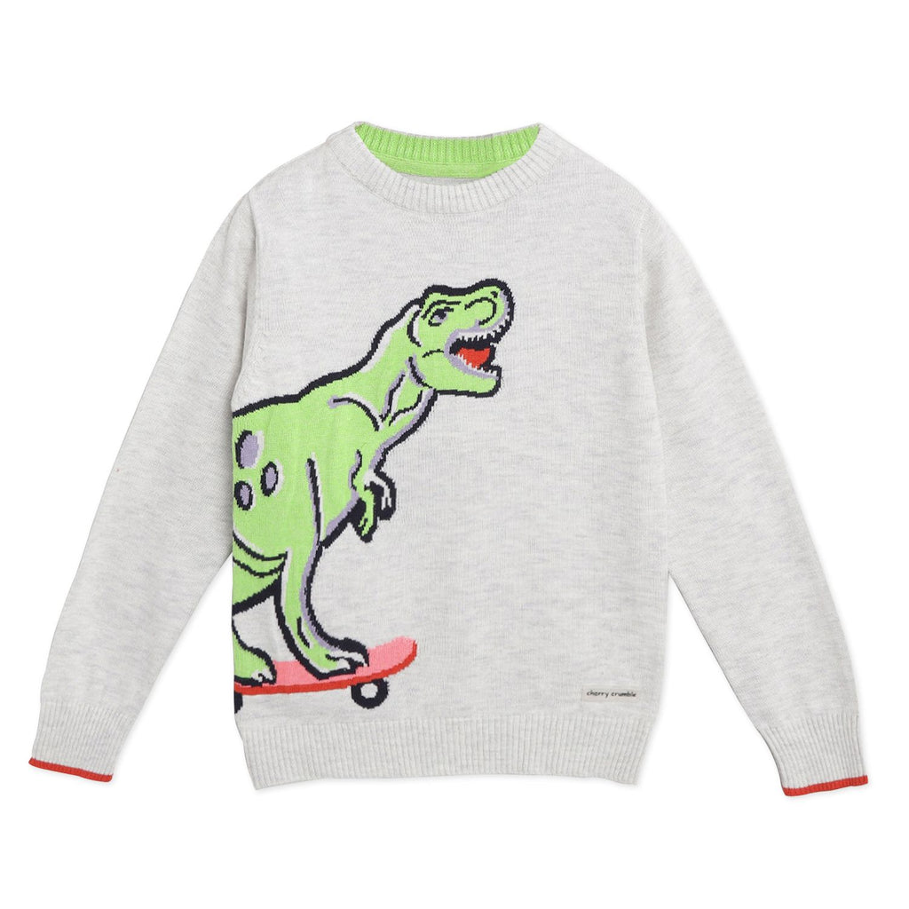Dino Sweater for Boys