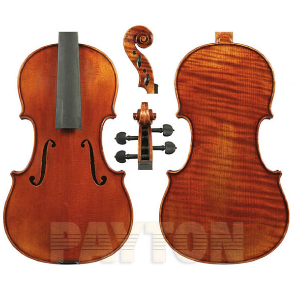 Raggetti Master Violin No.6.2-1735 Plowden Complete Outfit with Superior Set Up.