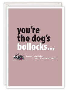 You're the dog's bollocks...
