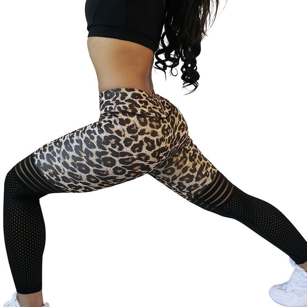 Leopard Slim Sports High Waist Mesh Leggings