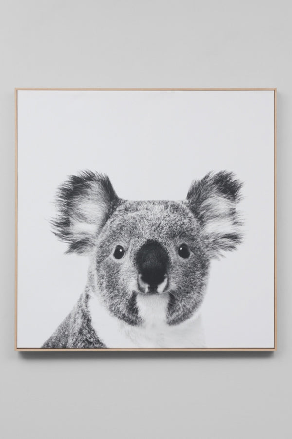 KOALA CANVAS - CrateExpectations