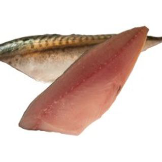 Mackerel Filleted & Pinned 350g
