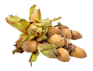 Load image into Gallery viewer, Cobnuts - 250g