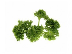 Parsley Curly Pre Pack - 100g