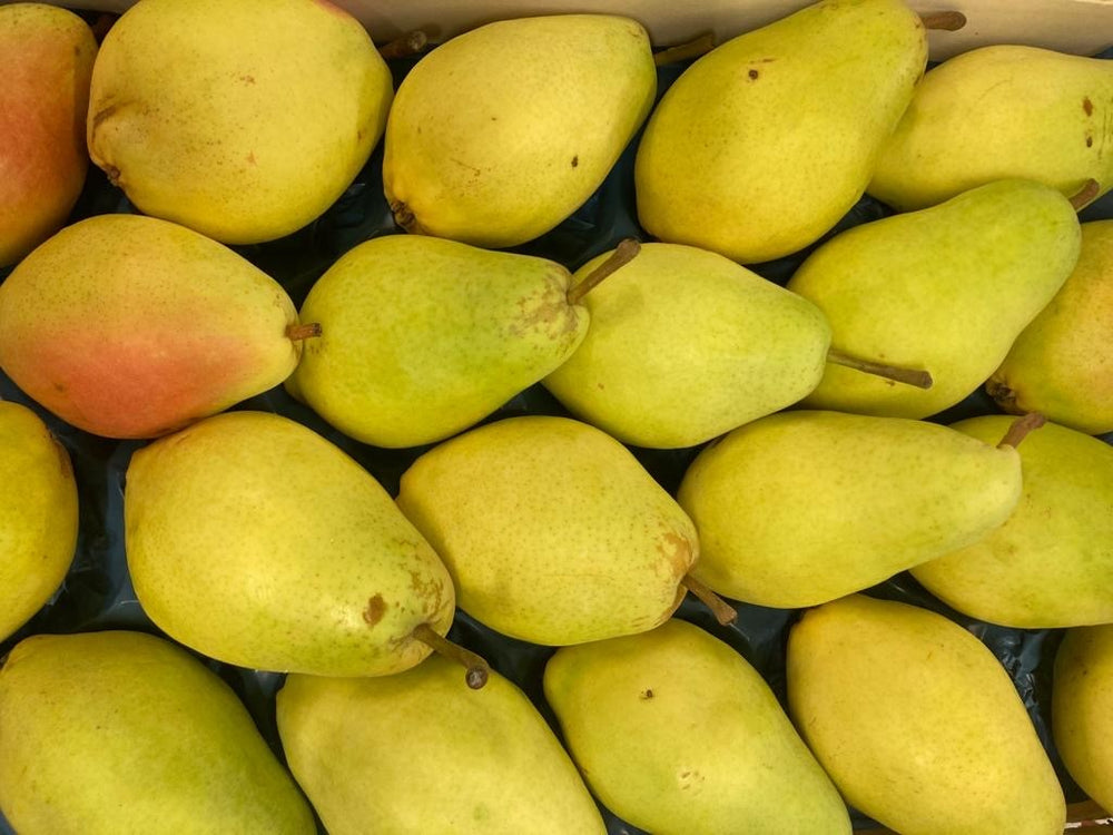 *SPECIAL* Turkish Pear Small - 4 each